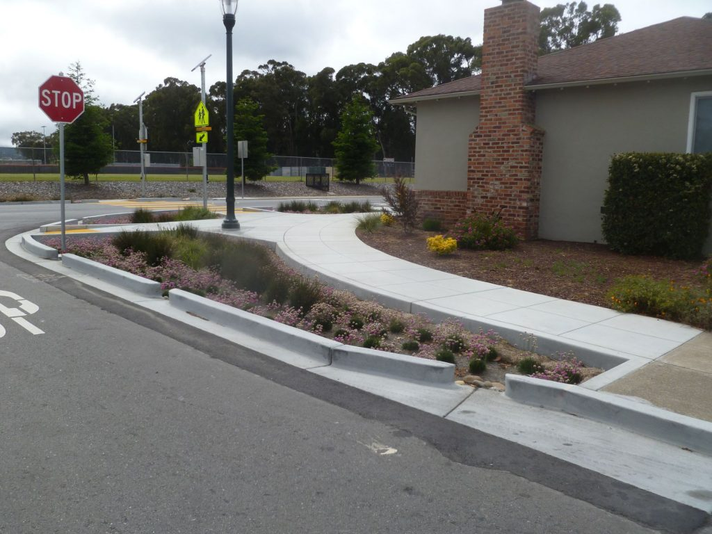 Plants and shrubs for stormwater capture in between concrete