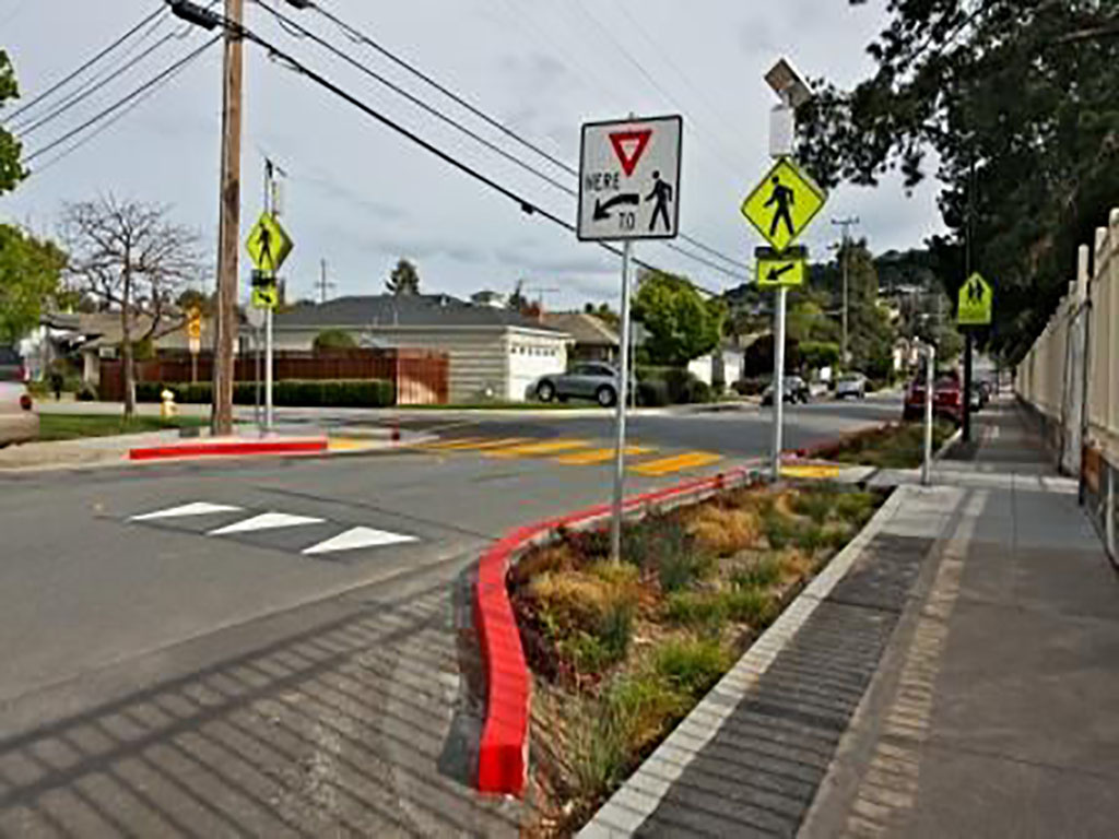 Street with extended curb that has landscape elements to capture and clean stormwater runoff